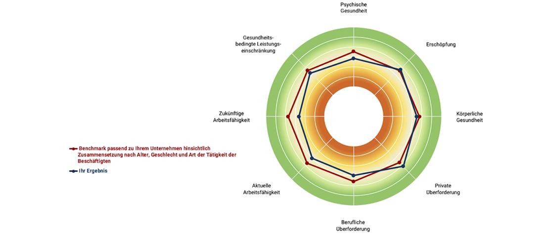 Die runde Grafik zeigt verschiedene Parameter des Benchmark-Analysetools
