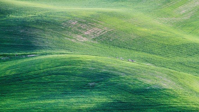 Landschaftsaufnahme von hügeligen Wiesen.
