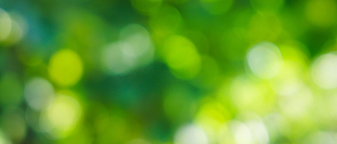 Grünes Bild mit Bokeh-Effekt